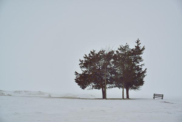 Selkirk Shores in Winter