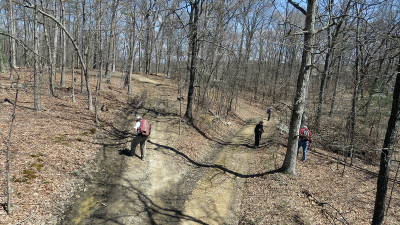 Searching for survey markers on Sorrel Ridge summit