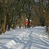 23 Snowy towpath at Weverton