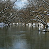 09 Upstream Potomac at Brunswick boat ramp