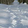 20 Snow covered C&O Canal towpath @ milepost 58