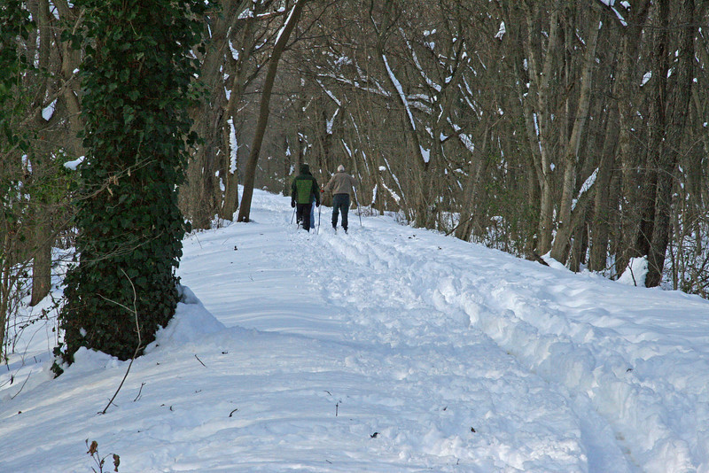 04 Cross-country skiers on towpath_Brunswick