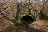 2/15/2009   C&O Canal Culvert #79 located .4 miles downstream from the Catoctin Creek Aqueduct. Over 240 culverts were built to carry intersecting streams under the canal. This culvert was also used as a road culvert enabling Lander residents, horses and wagons to cross under the C&O Canal.