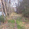 11/11/2004  Heading upstream on after passing the guard lock at mile 85.8 the towpath becomes narrower and overgrown.