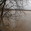11 Flooded Potomac at mouth of Israel Creek