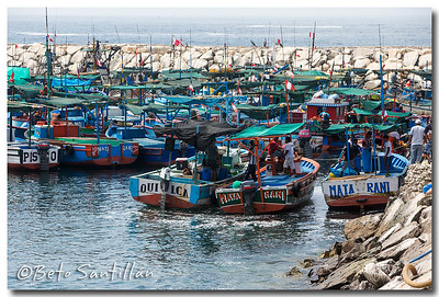 SEA KAYAK 1DX 020315-0382