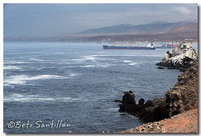 SEA KAYAK 1DX 020315-0378