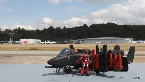 COBRA RATTLER (CUSTOM COIL VERSION) W/ WILD WEASEL AT KBFI