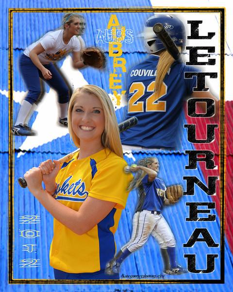 Aubrey senior poster