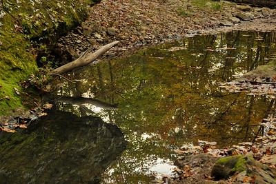 SUMMER'S REMNANTS Mill Creek - Combs, AR