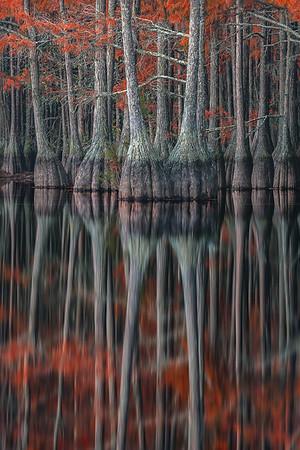 Red to Stilts