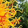 Chihuly Glass Sculpture Exhibit at the Dallas Arboretum