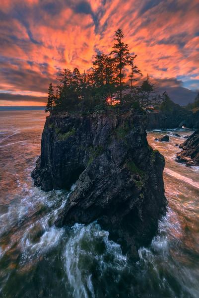 Sanctuary Spot - Oregon