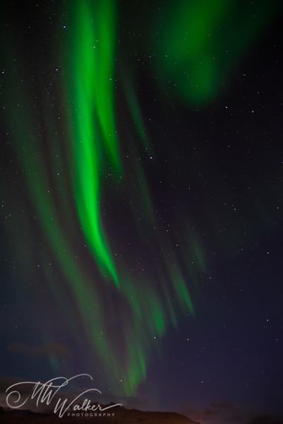 Iceland - Northern Lights-4.jpg