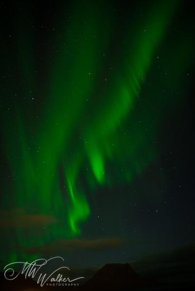 Iceland - Northern Lights-15.jpg