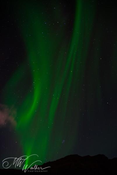 Iceland - Northern Lights-10.jpg
