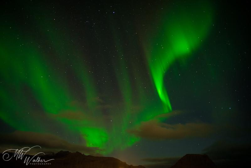 Iceland - Northern Lights-11.jpg