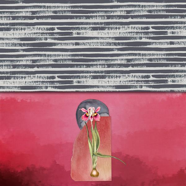 Lady Iris in Abstractia
