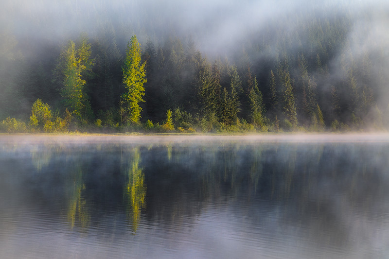 """""""Morning Serenade"""" Oregon"""