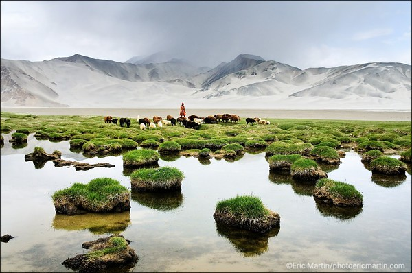 MARCO POLO CHINE. REGION DU XINJIANG. Jamila, une jeune bergère kirghize mène son troupeau au bord du lac Bulong dans les montagnes du Pamir. Au second plan, les montagnes de sable (Kumtagh).