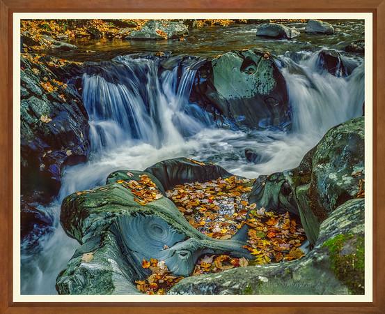 Rocky Stream & Fall Leaves II