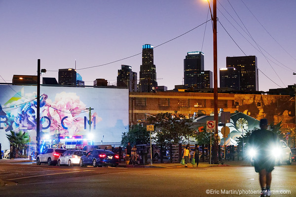 LOS ANGELES. DOWNTOWN ART DISTRICT.