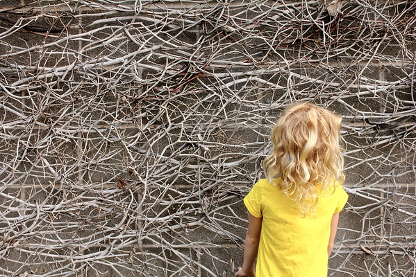 Tangled Vines with Tangled Hair