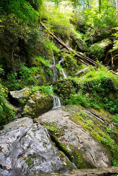 Smoky Mountain National Park-3.jpg
