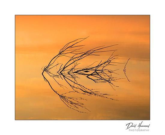 """Angled Reflections"""