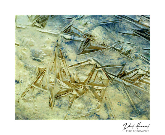 Winter Abstract