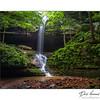 Ferne Clyffe Waterfall