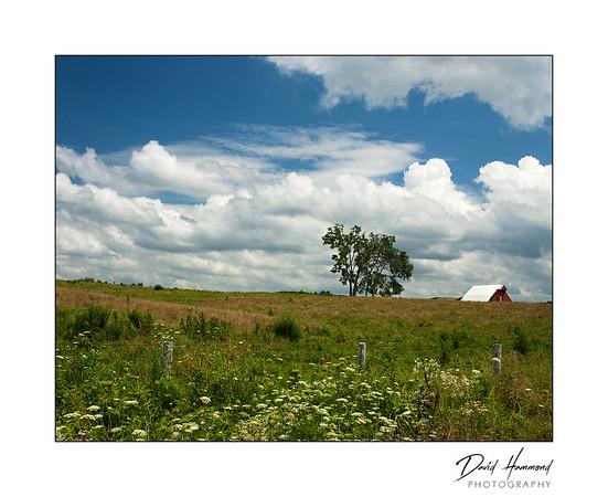 Rural Summer Afternoon
