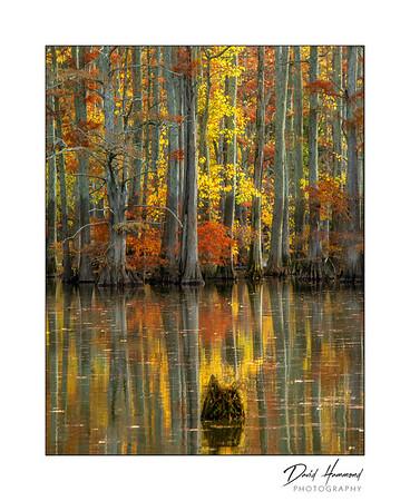 Autumn - Horseshoe Lake
