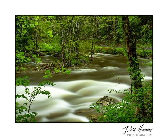 Rapids on Little Pigeon River