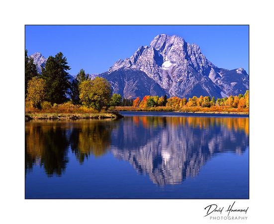 Ox Bow & Mount Moran