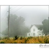 Foggy Morning / Rural House
