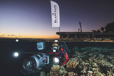 Cameraman sous la surface