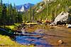 CO ESTES PARK ROCKY MOUNTAIN NATIONAL PARK MILLS LAKE MILLS LAKE TRAIL SEPTAG_9214196eMMW