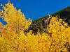 CO ESTES PARK ROCKY MOUNTAIN NATIONAL PARK MILLS LAKE TRAIL SEPTAG_9214805bMMW