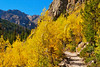 CO ESTES PARK ROCKY MOUNTAIN NATIONAL PARK MILLS LAKE TRAIL SEPTAG_9214817bMMW