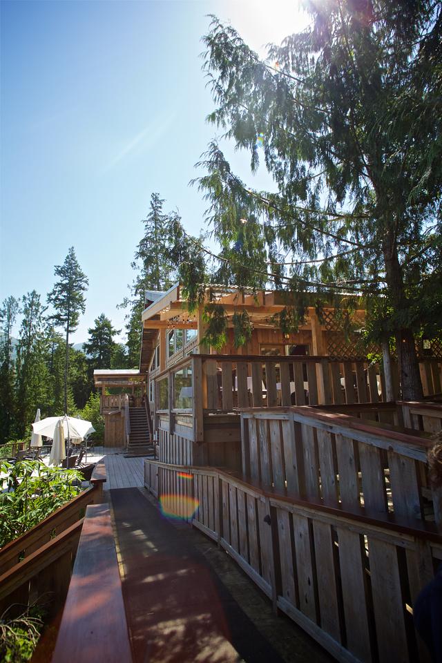 Wilderness Lodge 12