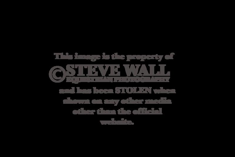 SWEP Theft Watermark