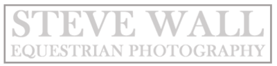 SWEP WATERMARK grey border