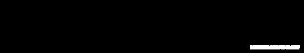 SWEP WATERMARK copy4