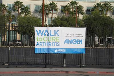 5-31-2014 Walk to Cure Arthritis Virgelia-4
