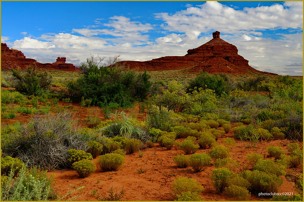 DIGITAL-COLOR-ADVANCED-GOLD-RED ROCK COUNTRY-ANN JACQUES