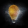 DIGITAL-CREATIVE-GOLD-POP GOES THE LIGHT BULB-GAYLE FISCHER