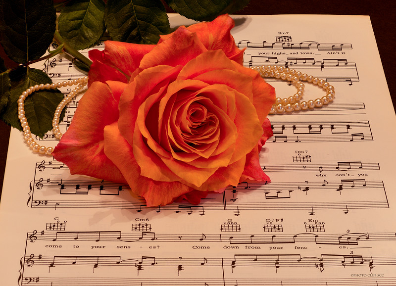 DIGITAL-COLOR-INTERMEDIATE-SILVER-ROSE, PEARLS, AND MUSIC-GARY PATE