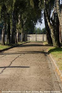 Auschwitz I, 2004