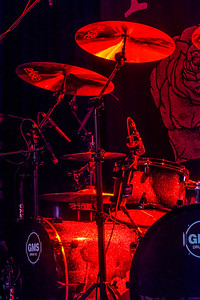 The New Roses_004©SergeHonthaas